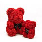 red rosebear donaska