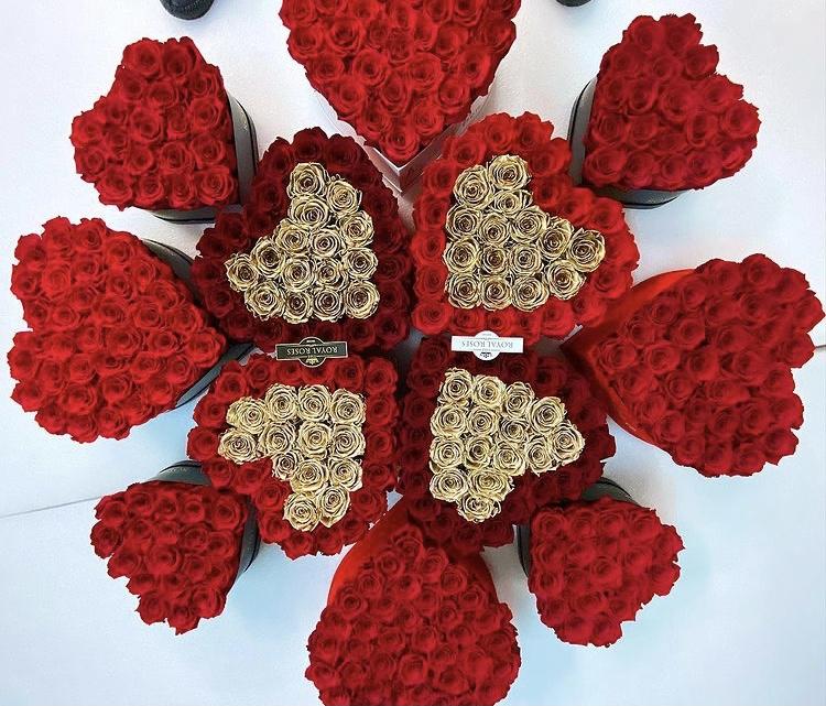 Trvácne ruže